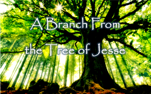 branch from the tree