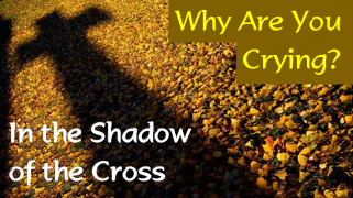 Shadow of the Cross Why Are You Crying